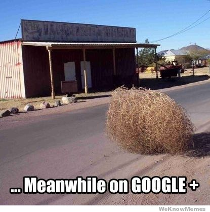 Meanwhile on Google+...